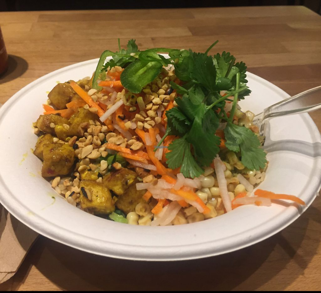 """Photo of Zao Asian Cafe  by <a href=""""/members/profile/LinnDaugherty"""">LinnDaugherty</a> <br/>vegan bowl with brown rice and tofu and green curry and everything vegan <br/> February 24, 2017  - <a href='/contact/abuse/image/49417/229845'>Report</a>"""