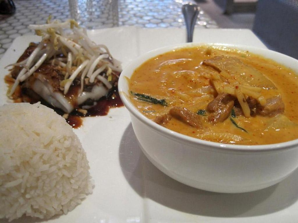 "Photo of CLOSED: Pukk  by <a href=""/members/profile/Babette"">Babette</a> <br/>Red Curry Duck (super good) with rice and square noodle roll with black sweet chili (didn't like the sauce) <br/> July 8, 2014  - <a href='/contact/abuse/image/4960/73523'>Report</a>"