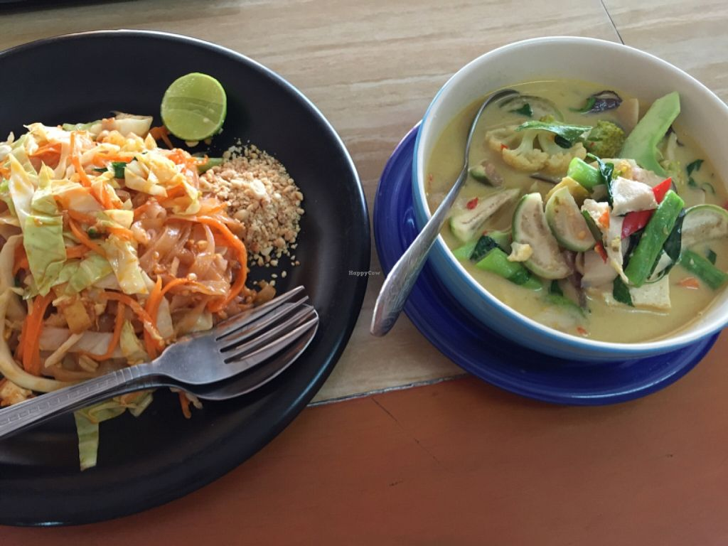 "Photo of CLOSED: Mea Nuu Vegetarian Food  by <a href=""/members/profile/DimiLekarev"">DimiLekarev</a> <br/>green curry and po Thai <br/> December 12, 2015  - <a href='/contact/abuse/image/50006/128003'>Report</a>"