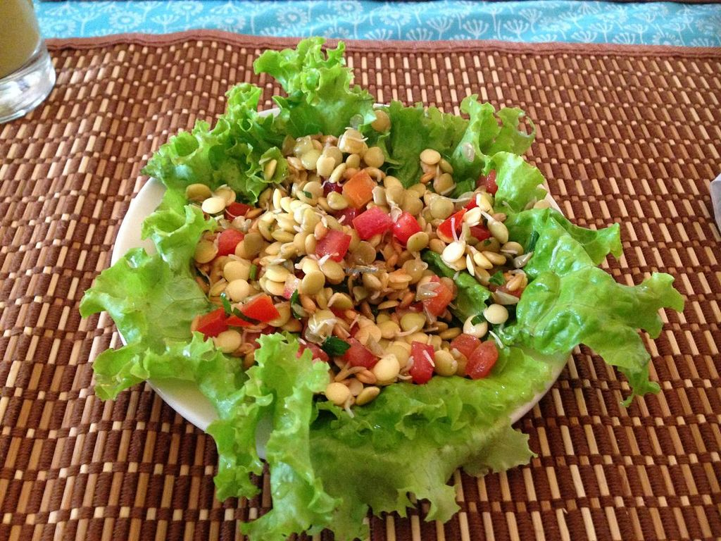 """Photo of Govindas' Natural - Vrinda  by <a href=""""/members/profile/Paolla"""">Paolla</a> <br/>Chaski fest raw menu: salad with lettuce and sprouted grains <br/> November 8, 2014  - <a href='/contact/abuse/image/50094/85010'>Report</a>"""