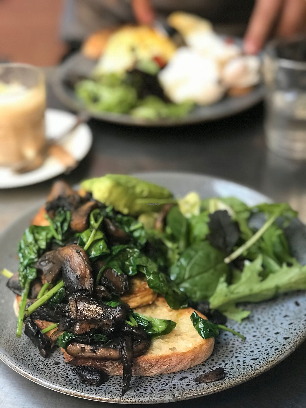 """Photo of Country Road Cafe  by <a href=""""/members/profile/swainjohnson"""">swainjohnson</a> <br/>Pesto mushroom w/ Avo <br/> January 8, 2018  - <a href='/contact/abuse/image/50100/344182'>Report</a>"""