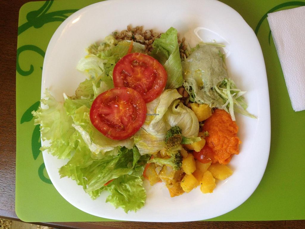 """Photo of Villa Natural  by <a href=""""/members/profile/Paolla"""">Paolla</a> <br/>Some of the vegan salad options on a Sunday buffet: lettuce (2 types), tomato, zucchini with vegan mayo, carrot cream with macadamia nuts, broccoli with cherry tomatoes and ''mandioquinha'' (cassava) <br/> September 14, 2014  - <a href='/contact/abuse/image/50111/79936'>Report</a>"""