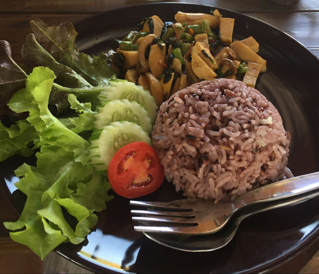 "Photo of CLOSED: Soracha Vegetarian  by <a href=""/members/profile/Chessmaster2000"">Chessmaster2000</a> <br/>Basil fried rice - 45 baht <br/> November 24, 2016  - <a href='/contact/abuse/image/50124/193870'>Report</a>"