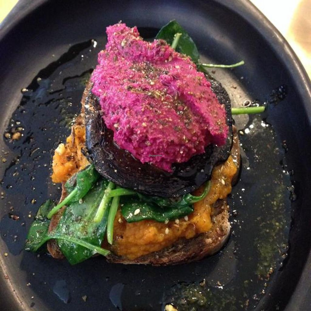 "Photo of CLOSED: Saluna  by <a href=""/members/profile/xjohn"">xjohn</a> <br/>Bruschetta on sourdough w/ maple roast squash, roasted field mushroom, sesame wilted spinach, beetroot hommus & a dust of zataar   <br/> August 15, 2014  - <a href='/contact/abuse/image/50196/77108'>Report</a>"
