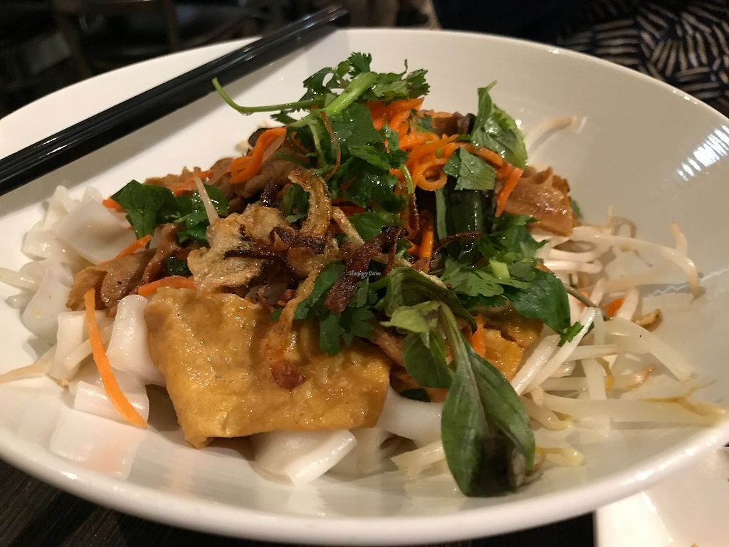 """Photo of Andy Nguyen's  by <a href=""""/members/profile/Alysoun%20Mahoney"""">Alysoun Mahoney</a> <br/>Self-nurturing chow fun - with soy beef, shiitake mushrooms & tofu in a mushroom sauce <br/> October 6, 2017  - <a href='/contact/abuse/image/5021/312177'>Report</a>"""