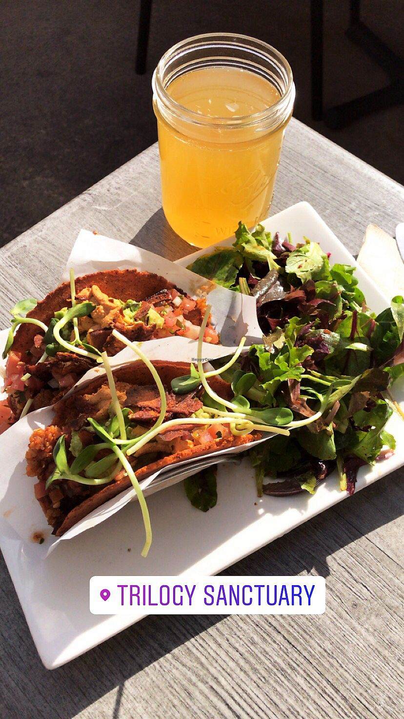 """Photo of Trilogy Sanctuary  by <a href=""""/members/profile/BrittanyBeck"""">BrittanyBeck</a> <br/>Quinoa tacos!  <br/> December 26, 2017  - <a href='/contact/abuse/image/50264/339128'>Report</a>"""