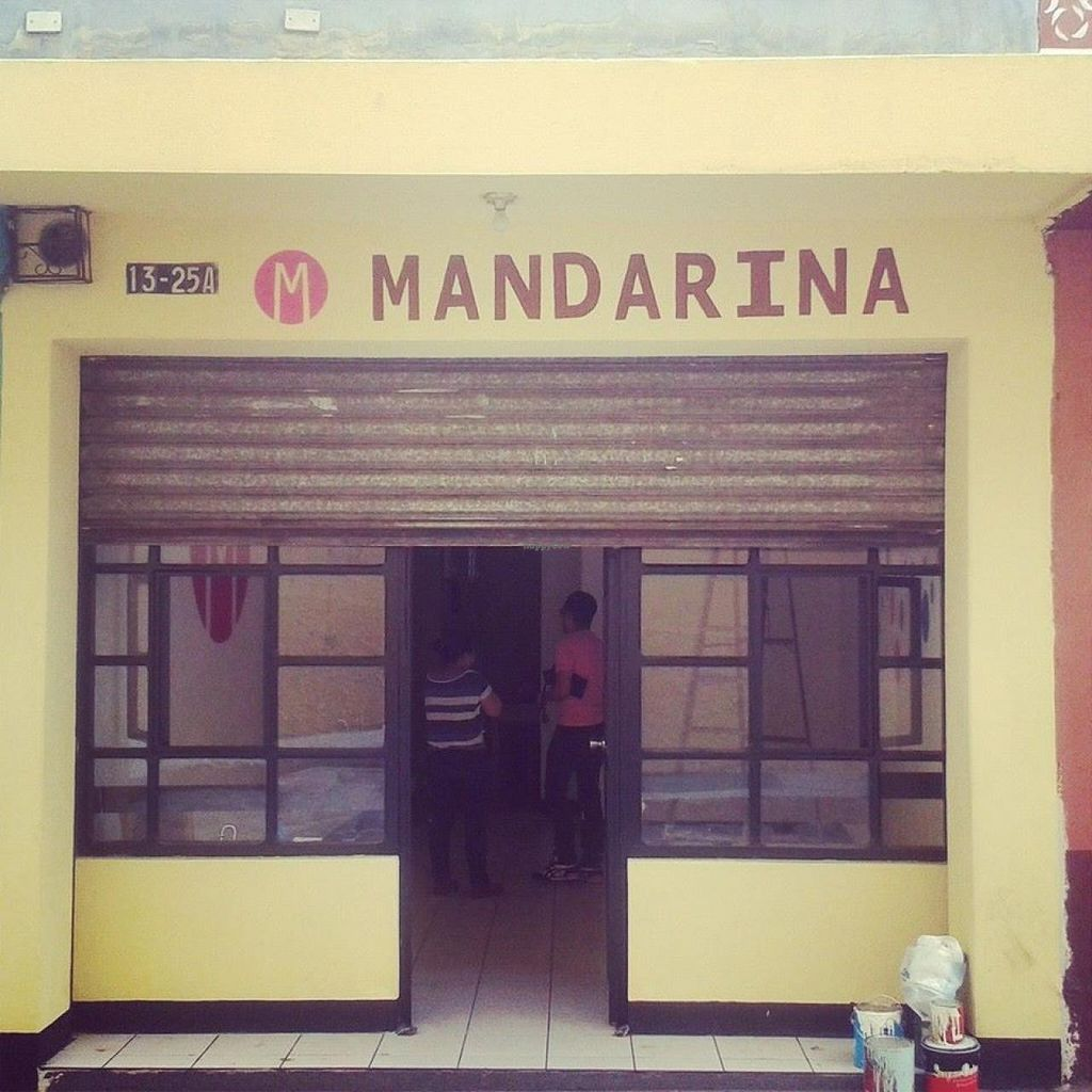 """Photo of Mandarina  by <a href=""""/members/profile/community"""">community</a> <br/>Mandarina  <br/> March 30, 2015  - <a href='/contact/abuse/image/50288/97369'>Report</a>"""