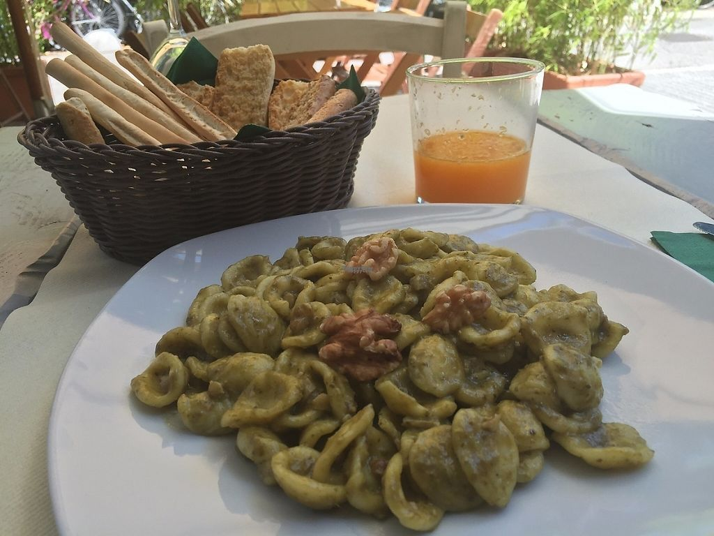 """Photo of Bio Sound System  by <a href=""""/members/profile/rackoo"""">rackoo</a> <br/>Walnut pesto orecchiette (vegan) <br/> December 13, 2016  - <a href='/contact/abuse/image/50371/200566'>Report</a>"""