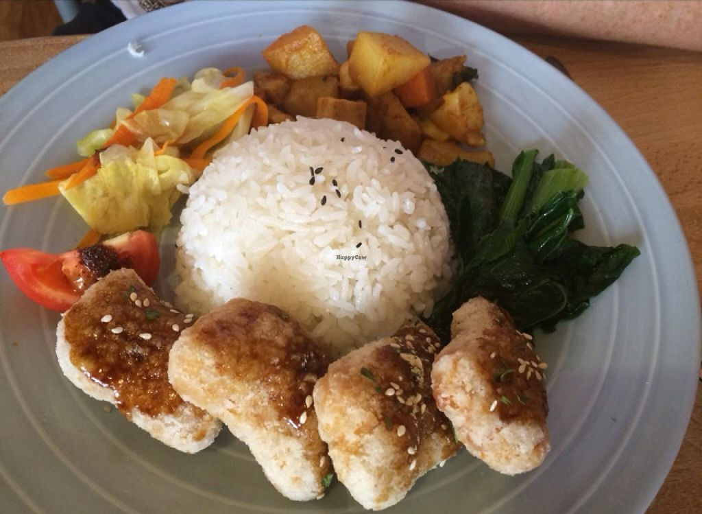 "Photo of Kuan-Yin Vegetarian  by <a href=""/members/profile/Jph71"">Jph71</a> <br/>chicken and rice  <br/> February 27, 2014  - <a href='/contact/abuse/image/5037/64932'>Report</a>"