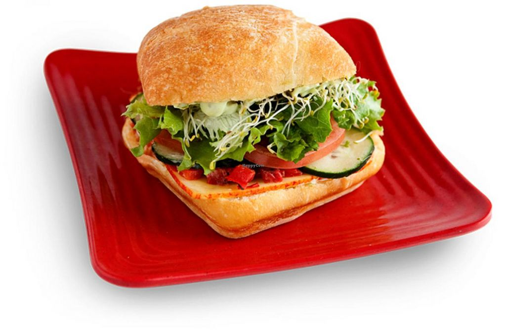 """Photo of Cafe Zupas  by <a href=""""/members/profile/Meggie%20and%20Ben"""">Meggie and Ben</a> <br/>Vegetarian sandwich (can be veganized with no cheese, no spread) <br/> January 27, 2015  - <a href='/contact/abuse/image/50457/91498'>Report</a>"""