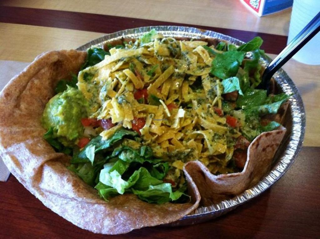 "Photo of Costa Vida  by <a href=""/members/profile/Meggie%20and%20Ben"">Meggie and Ben</a> <br/>Vegan salad <br/> August 22, 2014  - <a href='/contact/abuse/image/50459/77911'>Report</a>"