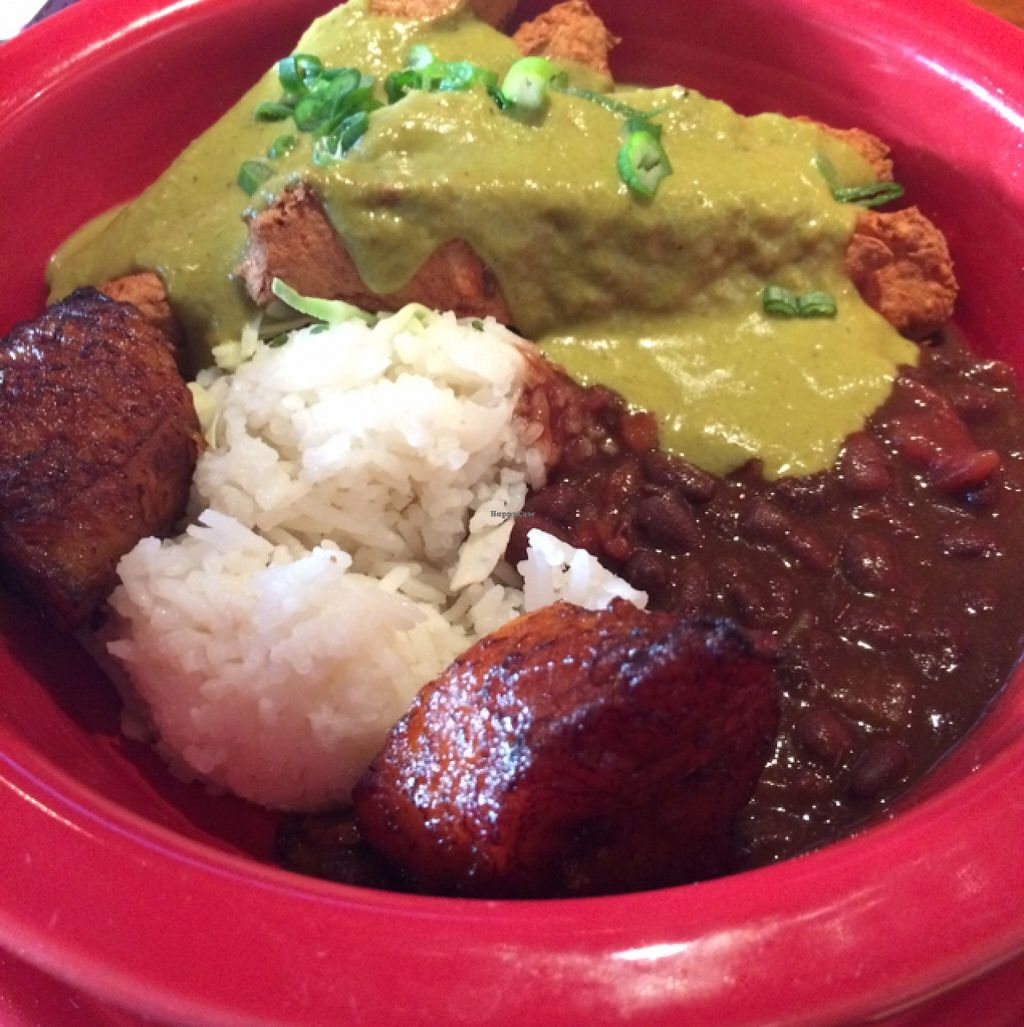 """Photo of Hula's Island Grill  by <a href=""""/members/profile/calexmayer"""">calexmayer</a> <br/>Jungle Green Curry bowl with 'fried chicken' <br/> February 7, 2016  - <a href='/contact/abuse/image/50527/135369'>Report</a>"""