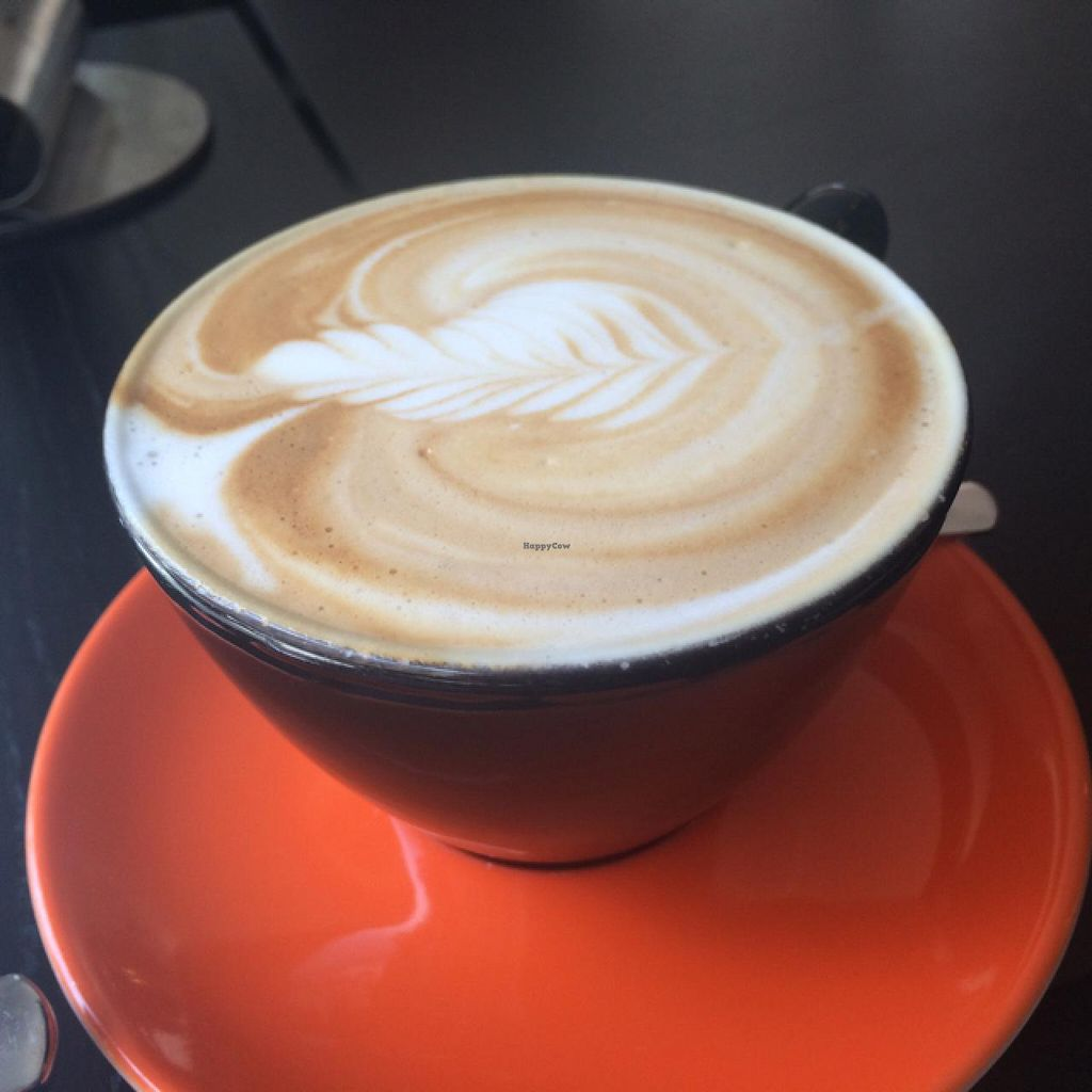 """Photo of Phoenix Coffee  by <a href=""""/members/profile/Plantpower"""">Plantpower</a> <br/>large flat white <br/> May 22, 2015  - <a href='/contact/abuse/image/50533/103113'>Report</a>"""