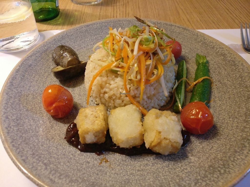 "Photo of Oslo  by <a href=""/members/profile/Meaks"">Meaks</a> <br/>Brown rice with veggies, fried tofu cubes and Japanese plum sauce <br/> July 15, 2017  - <a href='/contact/abuse/image/50583/280472'>Report</a>"