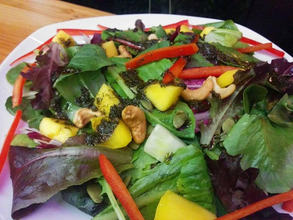 """Photo of Lotus Seed Vegan  by <a href=""""/members/profile/carson"""">carson</a> <br/>Mango Salad Mango, cucumber, pepper, cashew, pumpkin seeds, spinach with balsamic, dill & avocado oil  <br/> November 11, 2014  - <a href='/contact/abuse/image/50638/85240'>Report</a>"""