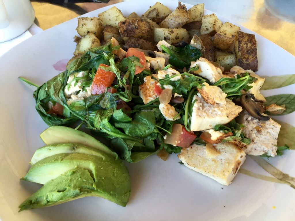 "Photo of CLOSED: D.I.G. Bistro  by <a href=""/members/profile/clovely.vegan"">clovely.vegan</a> <br/>tofu scramble.  <br/> April 9, 2016  - <a href='/contact/abuse/image/50650/143585'>Report</a>"