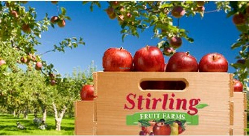"Photo of Stirling Fruit Farms  by <a href=""/members/profile/community"">community</a> <br/>Stirling Fruit Farms <br/> September 1, 2014  - <a href='/contact/abuse/image/50912/78818'>Report</a>"