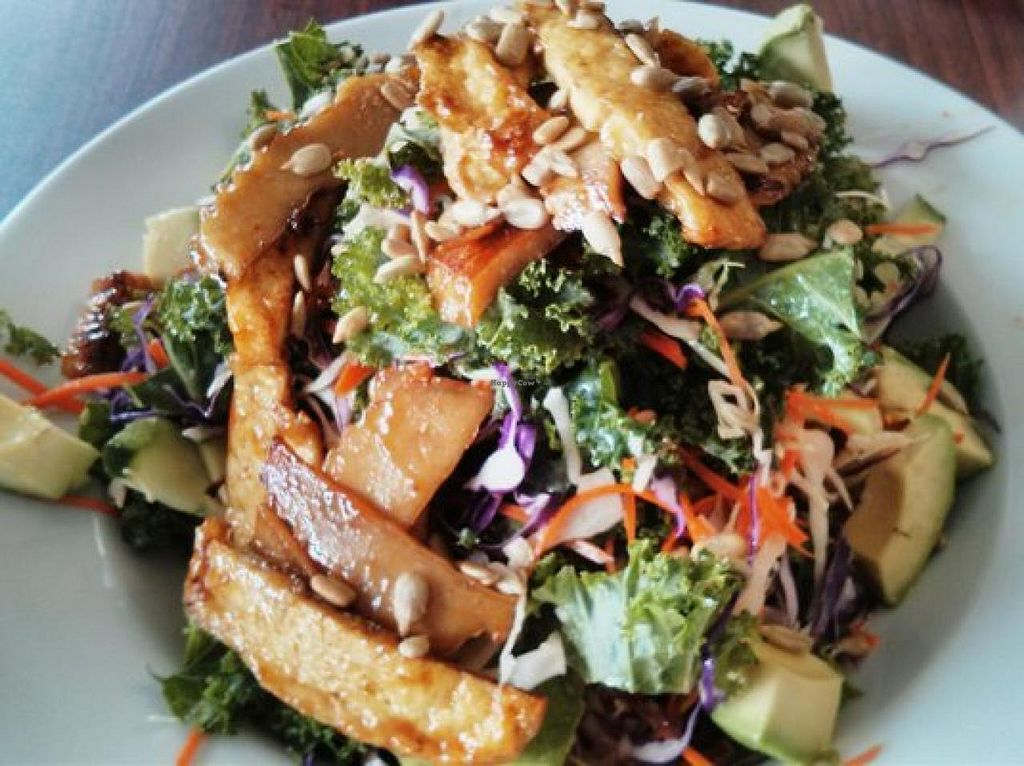 """Photo of Go Vegan  by <a href=""""/members/profile/JenBorcic"""">JenBorcic</a> <br/>Kale Salad <br/> October 15, 2014  - <a href='/contact/abuse/image/50948/83048'>Report</a>"""