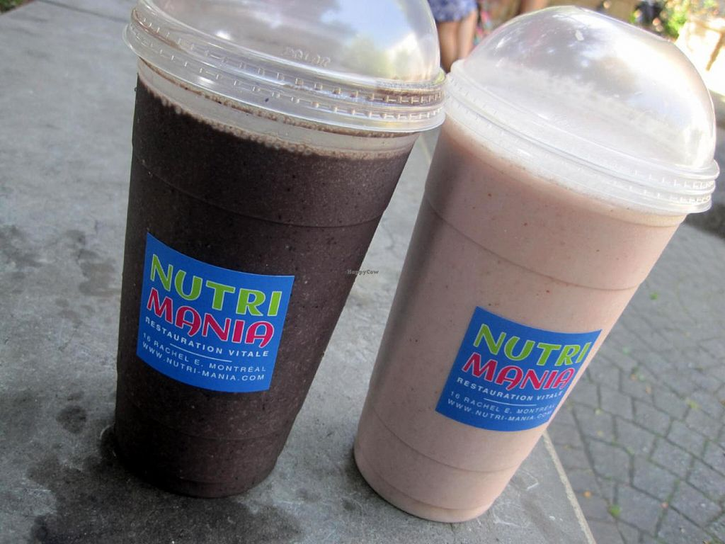 """Photo of CLOSED: Cafe Nutrimania  by <a href=""""/members/profile/Babette"""">Babette</a> <br/>Gigantic smoothies <br/> July 21, 2015  - <a href='/contact/abuse/image/51008/110339'>Report</a>"""