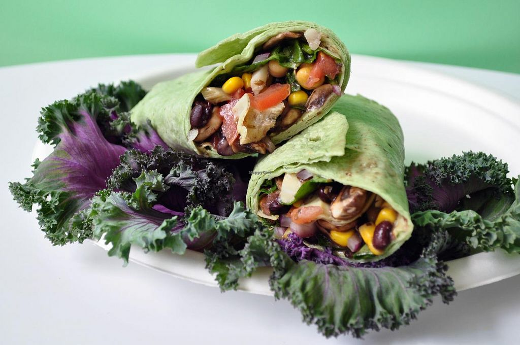 """Photo of CLOSED: Twist-n-Sprouts  by <a href=""""/members/profile/TwistNSprouts"""">TwistNSprouts</a> <br/>Our Vegetable Wrap   <br/> September 9, 2014  - <a href='/contact/abuse/image/51088/79466'>Report</a>"""