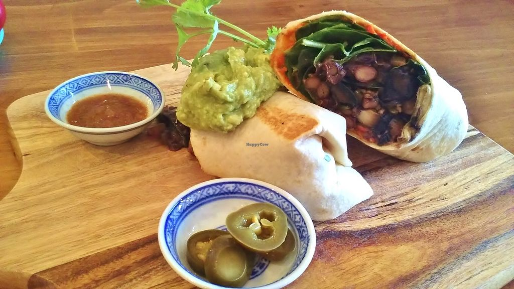 """Photo of Wild Timor Cafe  by <a href=""""/members/profile/verbosity"""">verbosity</a> <br/>Vegan burrito <br/> November 17, 2015  - <a href='/contact/abuse/image/51127/125333'>Report</a>"""