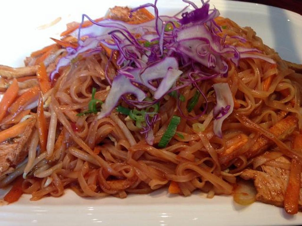 """Photo of Asian Stars Restaurant  by <a href=""""/members/profile/gwild"""">gwild</a> <br/>pad Thai  <br/> September 14, 2014  - <a href='/contact/abuse/image/51149/79866'>Report</a>"""