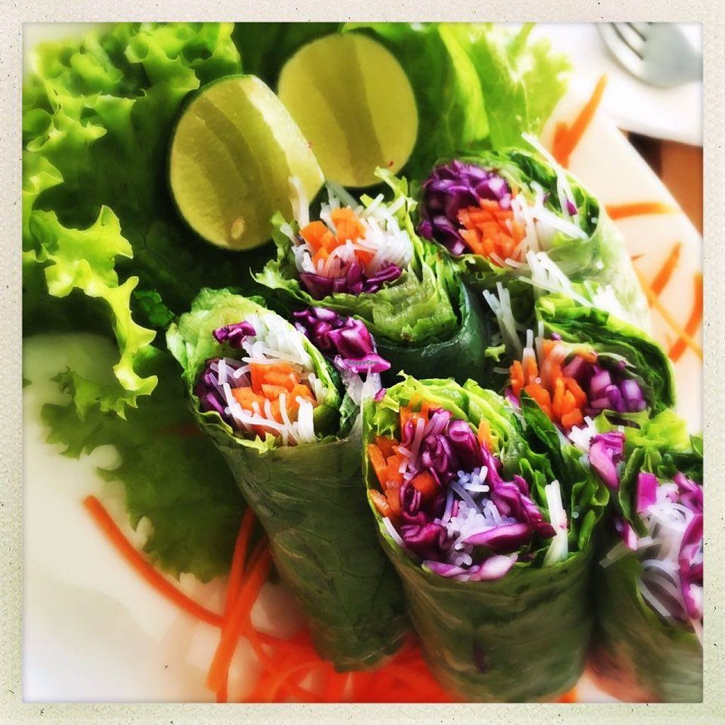 "Photo of CLOSED: Banana Leaf Vegan Thai Fusion  by <a href=""/members/profile/Susanna.J"">Susanna.J</a> <br/>The appetizer Fresh Vegetable Rolls.  <br/> March 1, 2016  - <a href='/contact/abuse/image/51196/138421'>Report</a>"