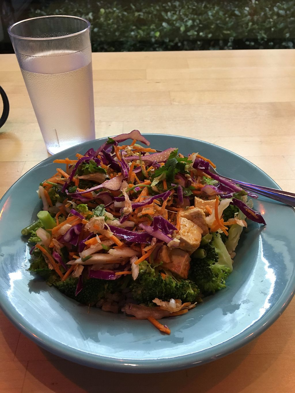 """Photo of Laughing Planet Cafe  by <a href=""""/members/profile/DianeH"""">DianeH</a> <br/>Thai Bowl <br/> November 3, 2017  - <a href='/contact/abuse/image/51224/321326'>Report</a>"""