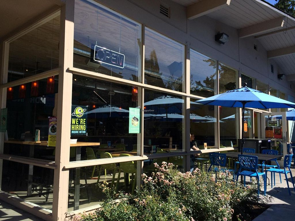 """Photo of Laughing Planet Cafe  by <a href=""""/members/profile/Zahavaraba"""">Zahavaraba</a> <br/>Laughing Planet Lake Oswego shows patio area <br/> September 11, 2014  - <a href='/contact/abuse/image/51224/79610'>Report</a>"""