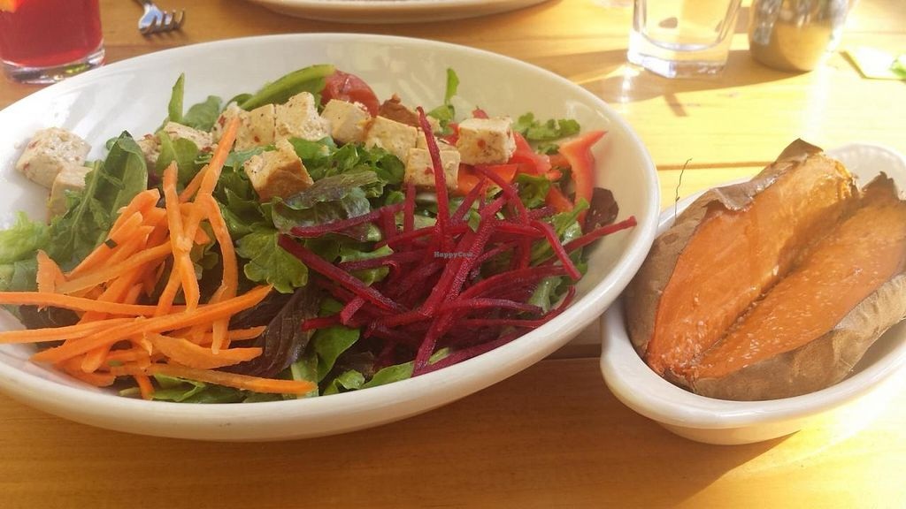 """Photo of French Meadow Bakery and Cafe  by <a href=""""/members/profile/EverydayTastiness"""">EverydayTastiness</a> <br/>large spa salad and sweet potato <br/> September 12, 2014  - <a href='/contact/abuse/image/51242/79718'>Report</a>"""