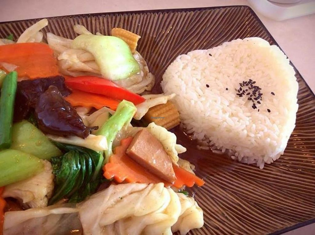 """Photo of Nature Vegetarian Food  by <a href=""""/members/profile/Lea"""">Lea</a> <br/>Veggies and rice <br/> January 6, 2014  - <a href='/contact/abuse/image/5125/61987'>Report</a>"""