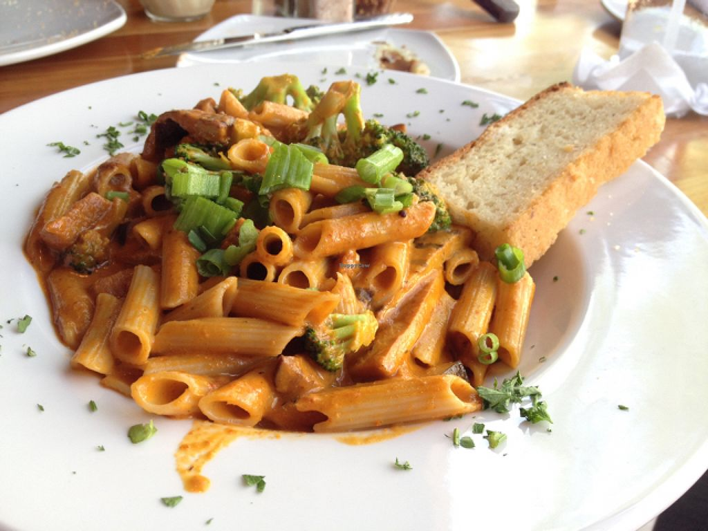 "Photo of Picazzo's Organic Italian Kitchen  by <a href=""/members/profile/Tigra220"">Tigra220</a> <br/>Red Thai Curry Pasta <br/> August 16, 2015  - <a href='/contact/abuse/image/51272/113890'>Report</a>"