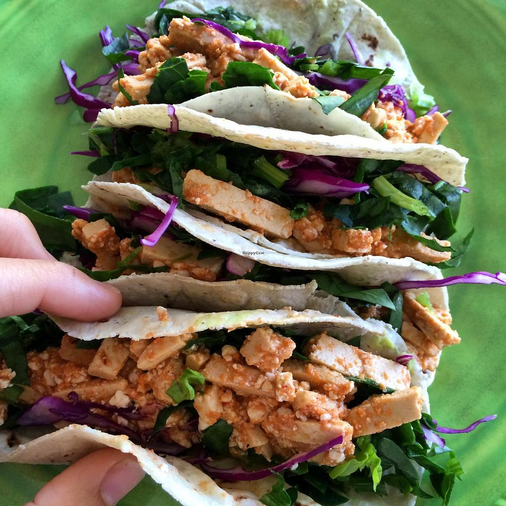 Photo of Verde Vegan  by verdevegan <br/>Chipotle Tofu Tacos! <br/> June 3, 2015  - <a href='/contact/abuse/image/51466/104630'>Report</a>