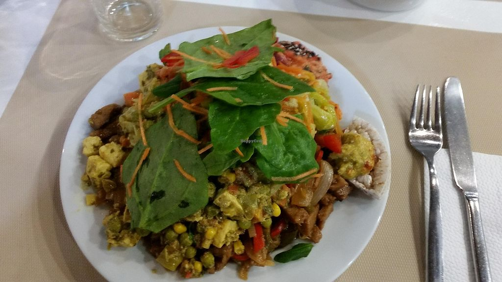 """Photo of Hibiscus  by <a href=""""/members/profile/FernandoMoreira"""">FernandoMoreira</a> <br/>seitan with onion, curry with tofu, salad <br/> April 16, 2018  - <a href='/contact/abuse/image/51505/386895'>Report</a>"""