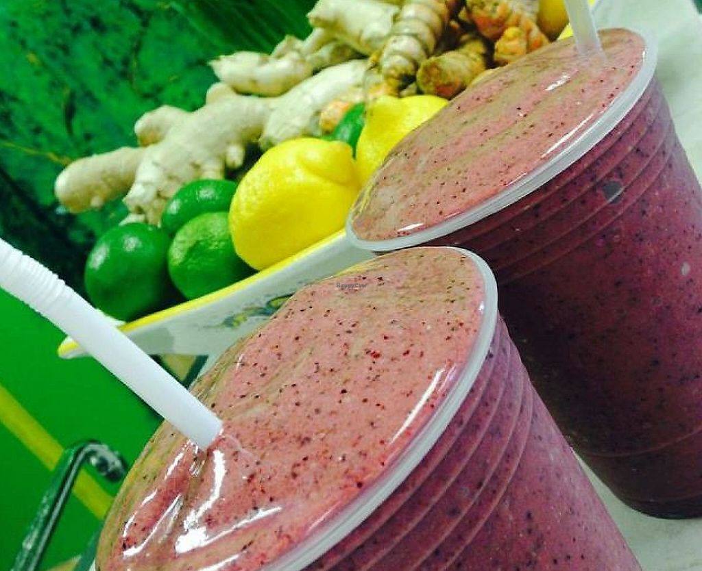"""Photo of Humanitree House Juice Joint and Gallery  by <a href=""""/members/profile/community"""">community</a> <br/>berry smoothies  <br/> October 2, 2014  - <a href='/contact/abuse/image/51580/198953'>Report</a>"""