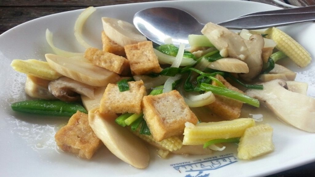 """Photo of First Villa Resort  by <a href=""""/members/profile/eric"""">eric</a> <br/>mushroom with tofu <br/> January 2, 2016  - <a href='/contact/abuse/image/51619/130840'>Report</a>"""