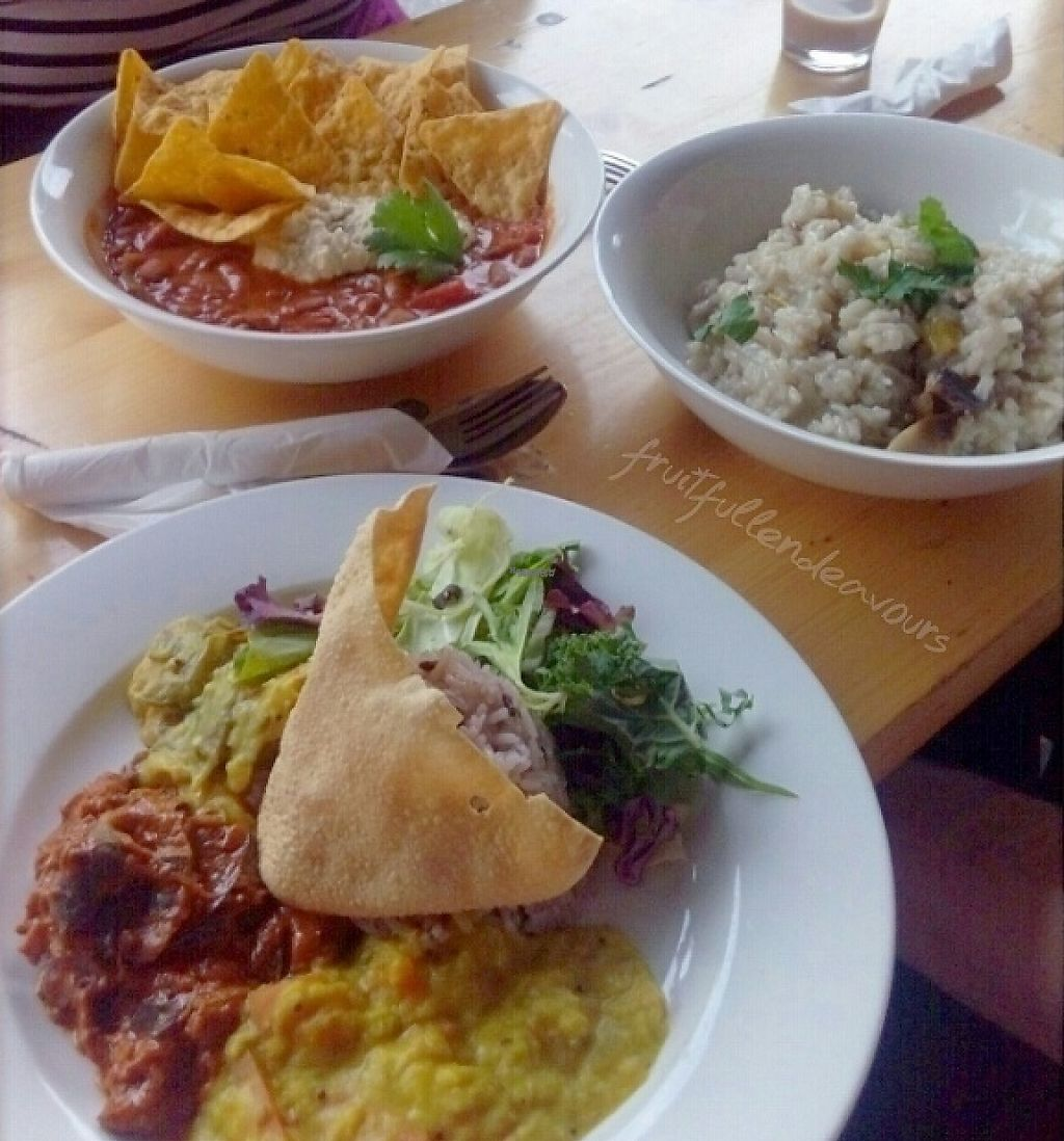 "Photo of Lentil as Anything - Newtown  by <a href=""/members/profile/IsabelleTamm"">IsabelleTamm</a> <br/>Curry plate, mushroom risotto, Mexican bean stew <br/> October 13, 2016  - <a href='/contact/abuse/image/51690/248134'>Report</a>"