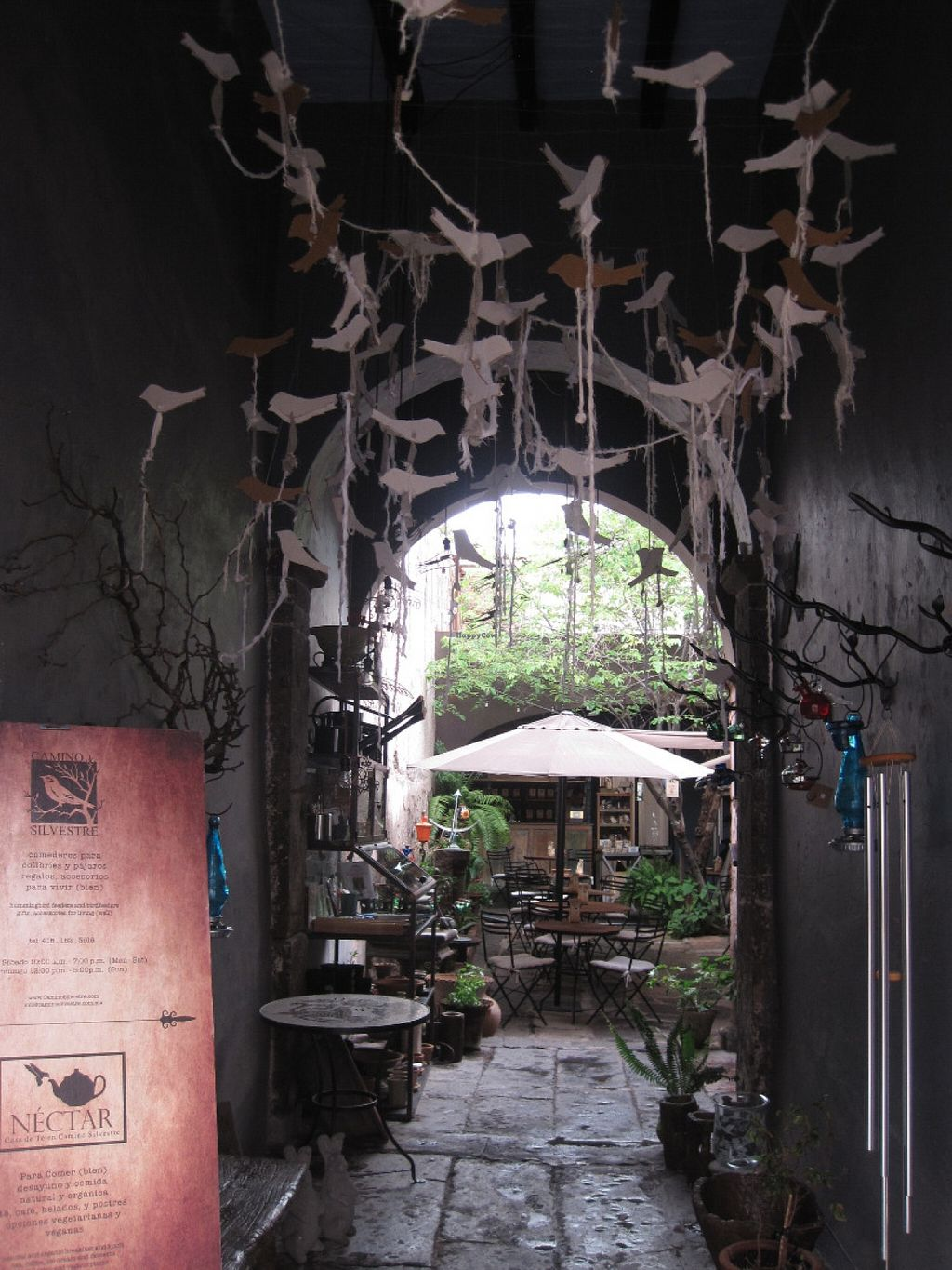 """Photo of Nectar  by <a href=""""/members/profile/sukifrance"""">sukifrance</a> <br/>You enter the courtyard through passageway under a remarkable paper mobile of flying birds <br/> July 1, 2016  - <a href='/contact/abuse/image/51693/157064'>Report</a>"""