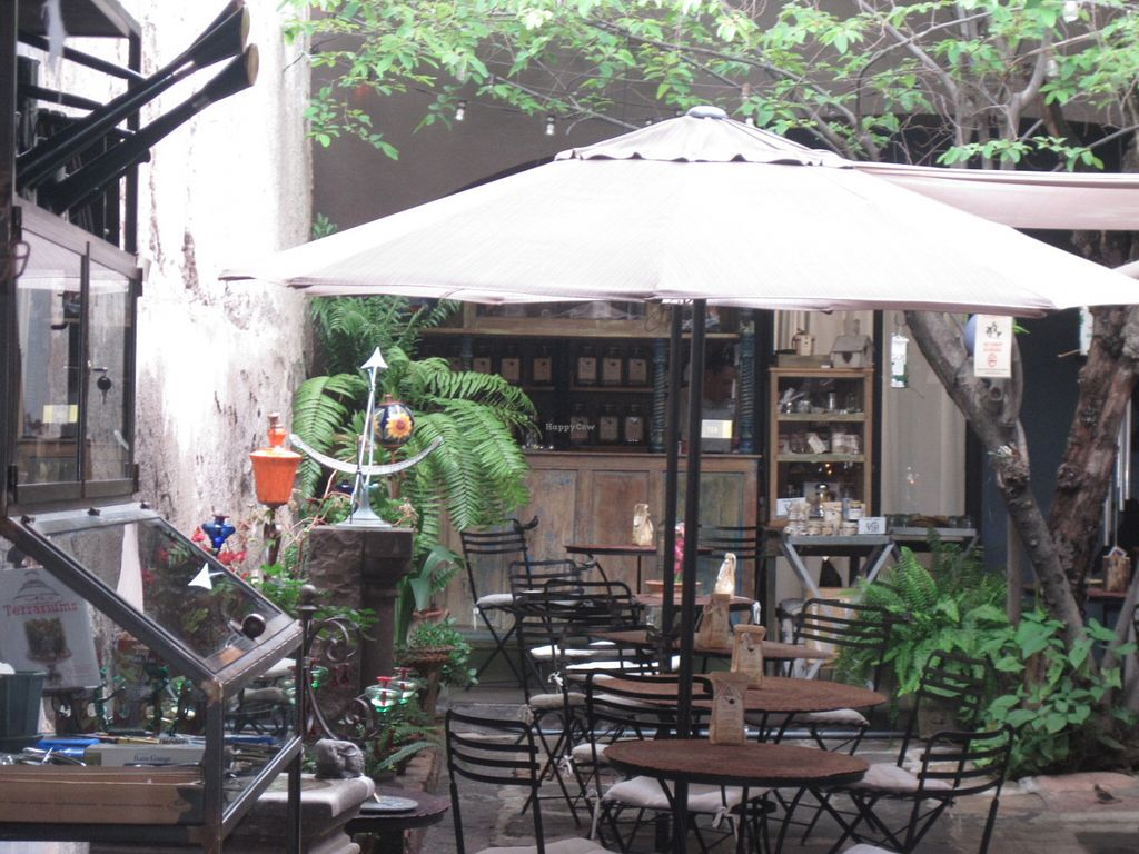 """Photo of Nectar  by <a href=""""/members/profile/sukifrance"""">sukifrance</a> <br/>The beautiful garden courtyard where you get to sit while eating amazing food <br/> July 1, 2016  - <a href='/contact/abuse/image/51693/157065'>Report</a>"""