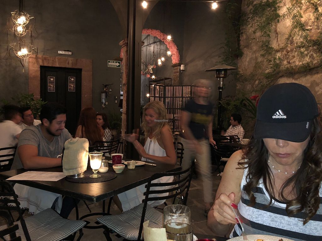 """Photo of Nectar  by <a href=""""/members/profile/Pico"""">Pico</a> <br/>Omantic vegan dinner at Nectar <br/> March 18, 2018  - <a href='/contact/abuse/image/51693/372564'>Report</a>"""