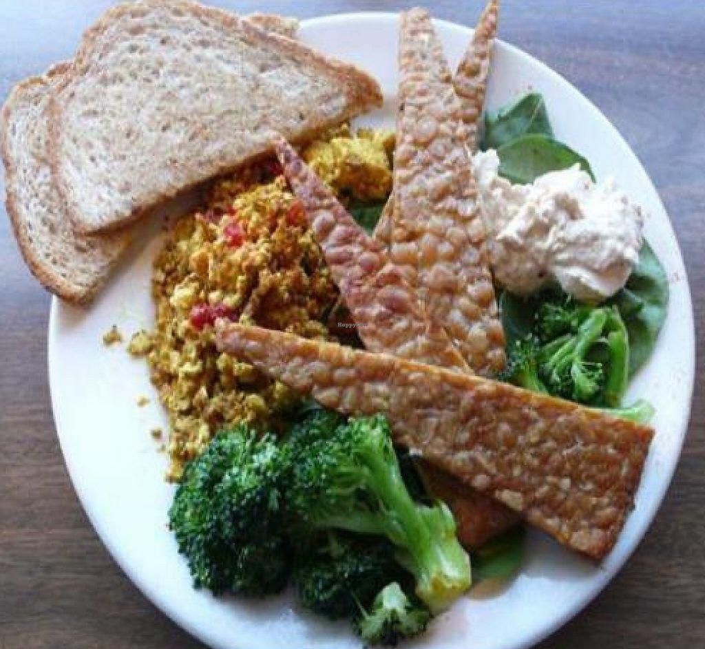 Wayward Vegan Cafe Reviews