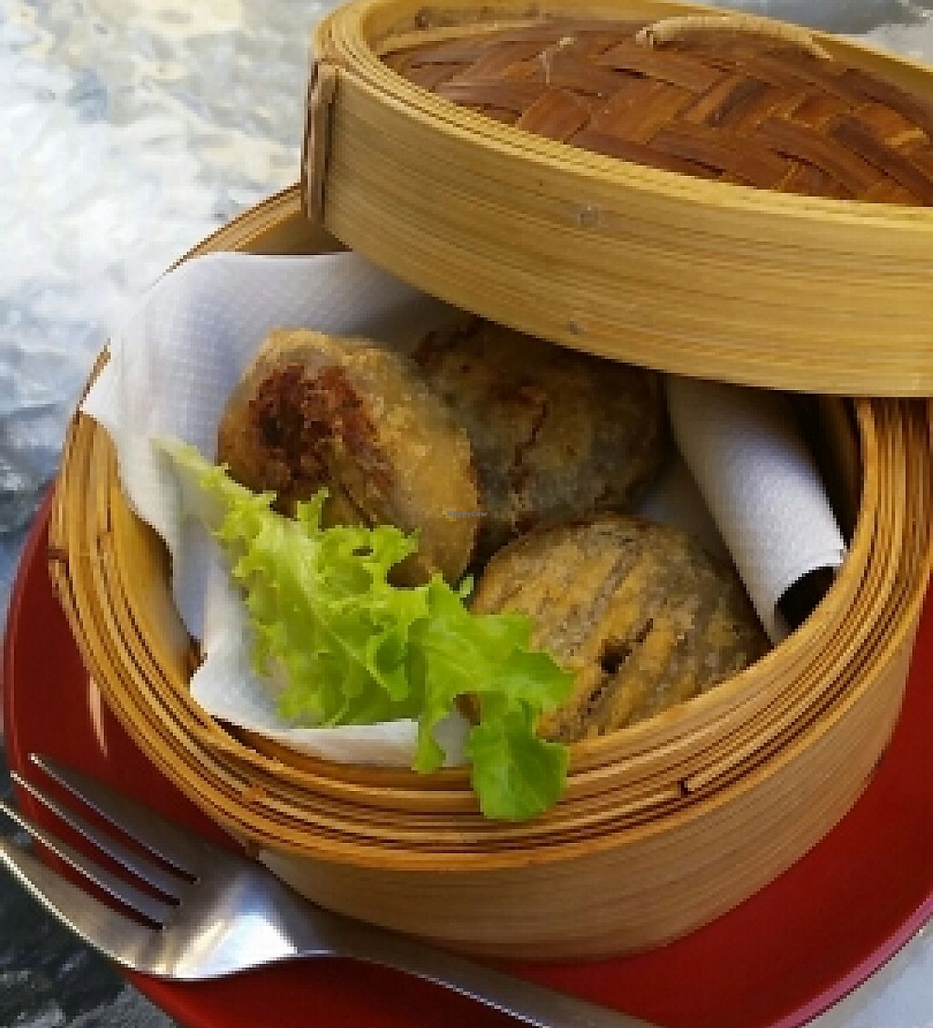 """Photo of Zenhouse Vegetarian Fusion  by <a href=""""/members/profile/peacewithinthepineal"""">peacewithinthepineal</a> <br/>fried bean curd  <br/> March 28, 2016  - <a href='/contact/abuse/image/51835/254811'>Report</a>"""