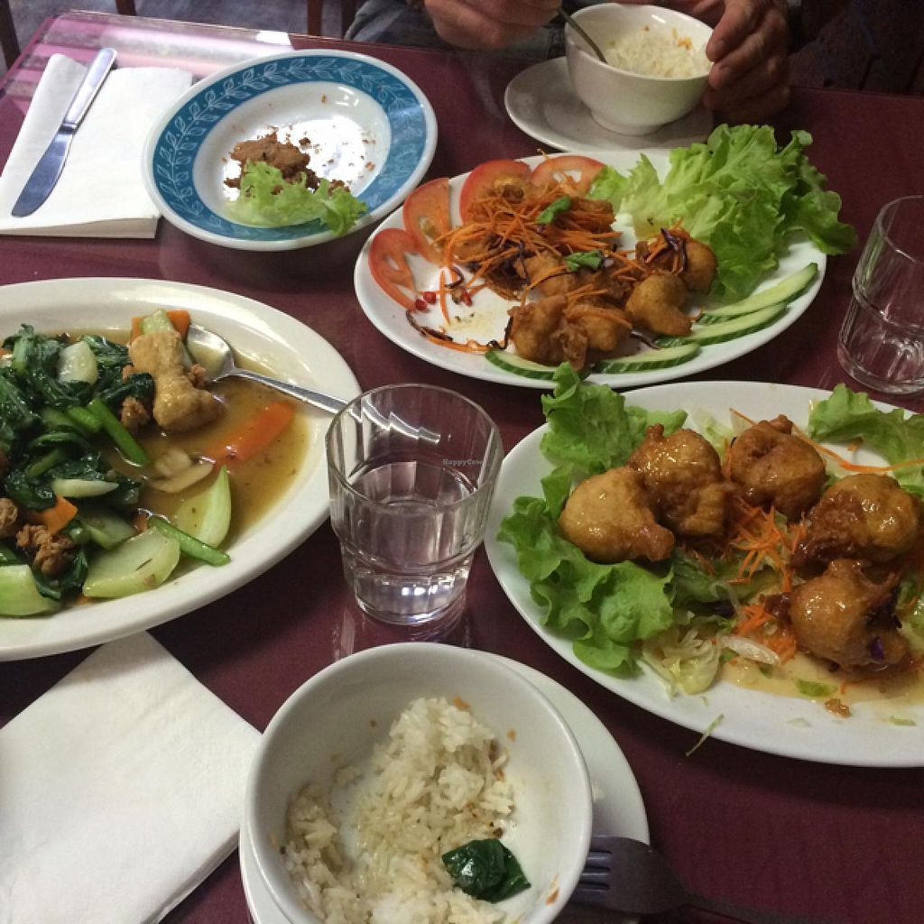 """Photo of Zenhouse Vegetarian Fusion  by <a href=""""/members/profile/Adro84"""">Adro84</a> <br/>Half way through!  <br/> February 1, 2015  - <a href='/contact/abuse/image/51835/91906'>Report</a>"""