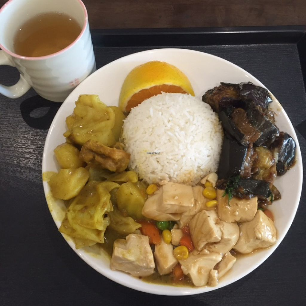 """Photo of IBAA Chatswood - Fo Guang Yuan  by <a href=""""/members/profile/Lozcriston"""">Lozcriston</a> <br/>Rice with tofu, eggplant and curry <br/> April 3, 2016  - <a href='/contact/abuse/image/5184/142609'>Report</a>"""