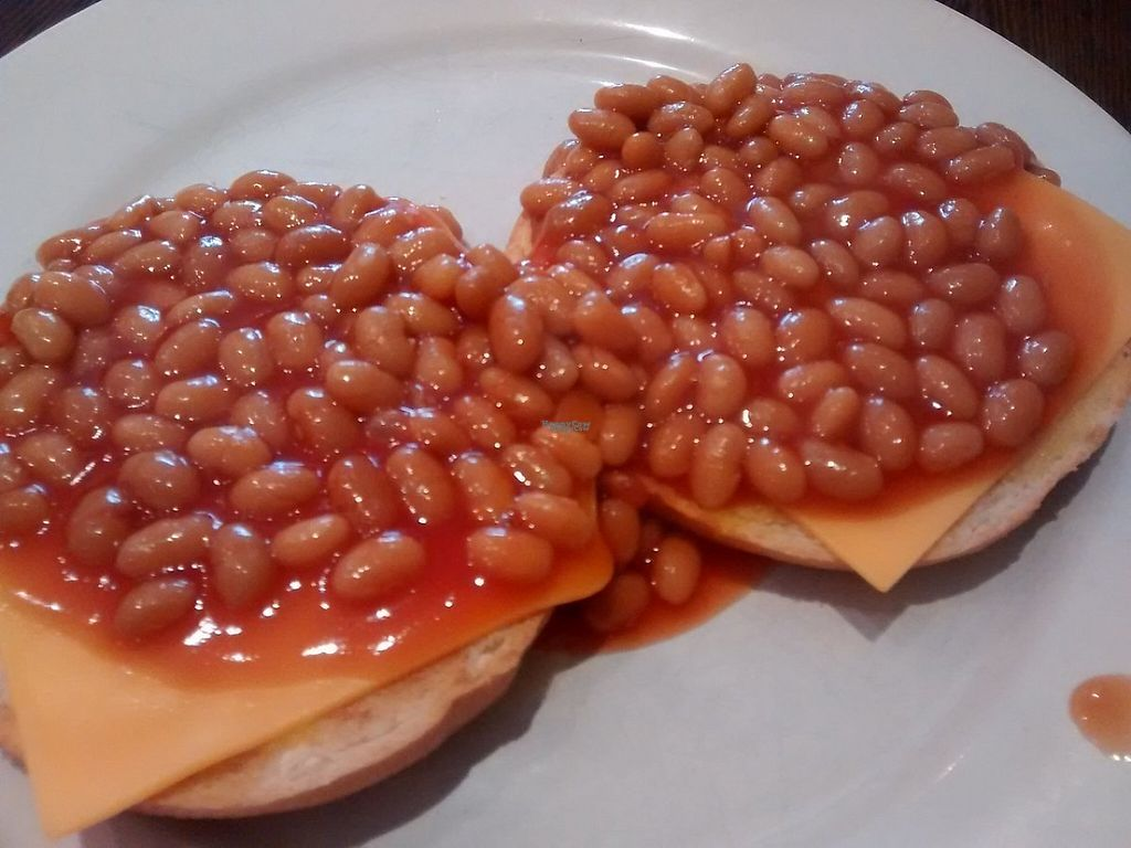 """Photo of Blend Tea and Coffee Merchants  by <a href=""""/members/profile/TrixieFirecracker"""">TrixieFirecracker</a> <br/>bagel with baked beans and vegan cheese <br/> November 26, 2016  - <a href='/contact/abuse/image/51850/194460'>Report</a>"""