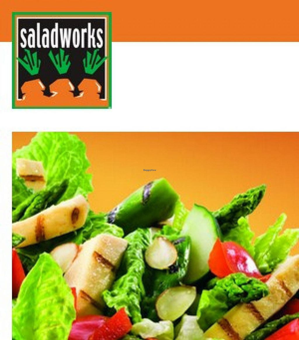 """Photo of Saladworks  by <a href=""""/members/profile/community"""">community</a> <br/>Saladworks <br/> September 30, 2014  - <a href='/contact/abuse/image/51854/81704'>Report</a>"""