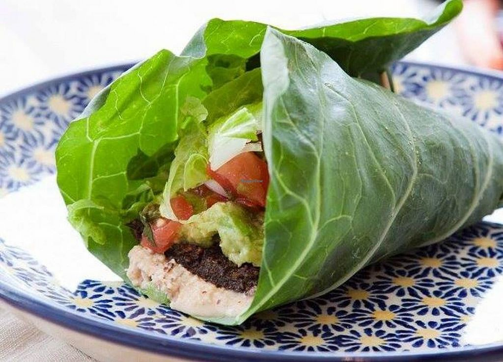 """Photo of Rawlicious  by <a href=""""/members/profile/community"""">community</a> <br/>veggie wrap  <br/> October 1, 2014  - <a href='/contact/abuse/image/51867/81864'>Report</a>"""