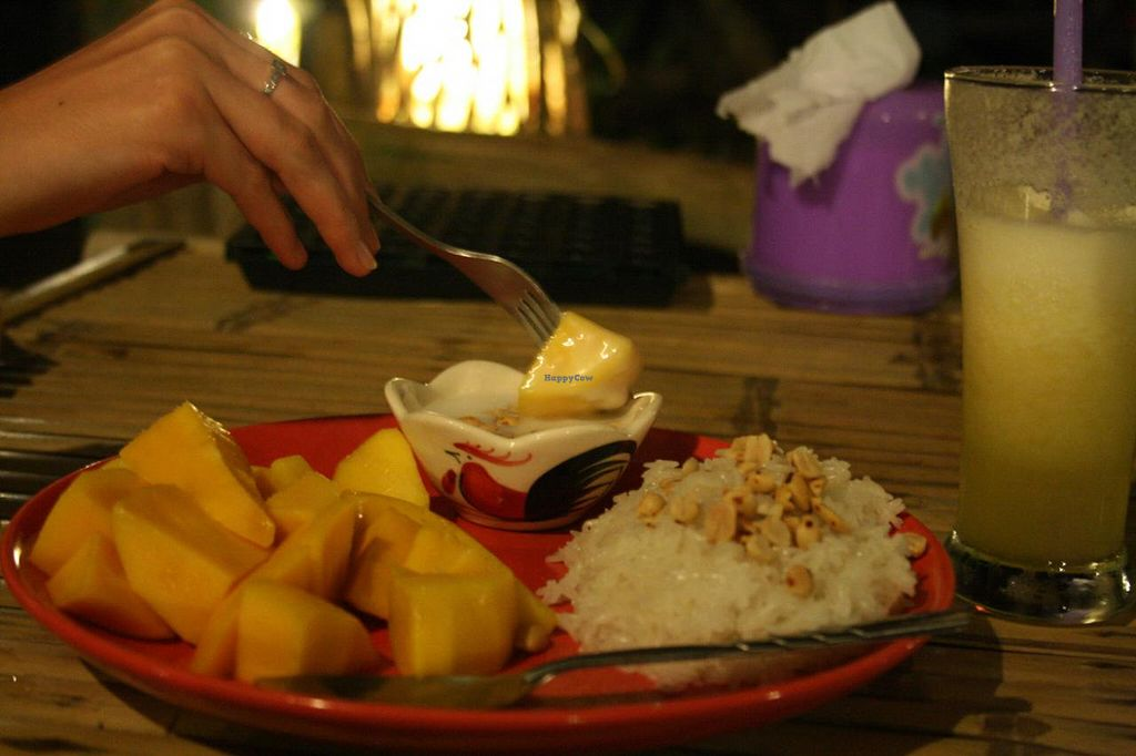 """Photo of Peace Paradise Restaurant  by <a href=""""/members/profile/Tereza-soucitne.cz"""">Tereza-soucitne.cz</a> <br/>Mango with sticky rice and peanuts <br/> October 4, 2014  - <a href='/contact/abuse/image/51939/82105'>Report</a>"""