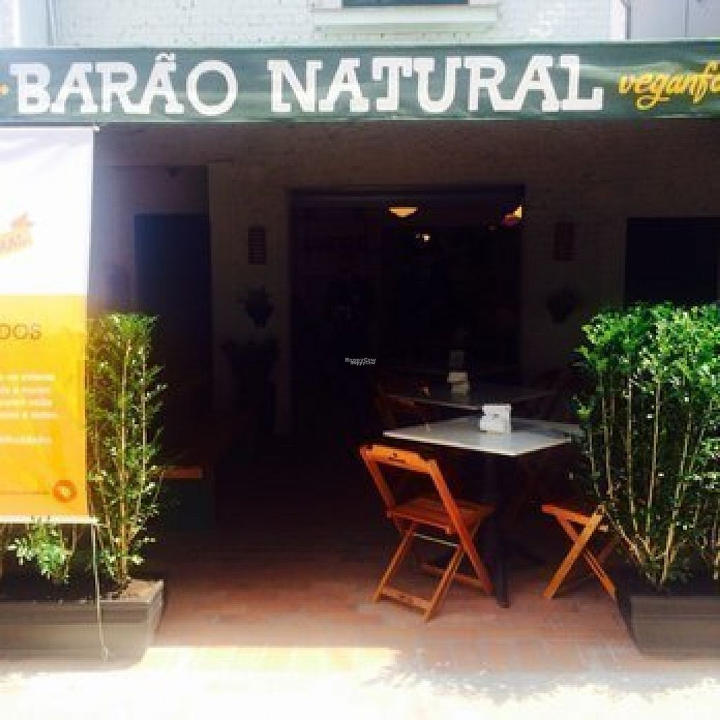 """Photo of Barao Natural - Baraozinho  by <a href=""""/members/profile/Sylvane"""">Sylvane</a> <br/>Barao Natural <br/> August 22, 2016  - <a href='/contact/abuse/image/51963/170702'>Report</a>"""