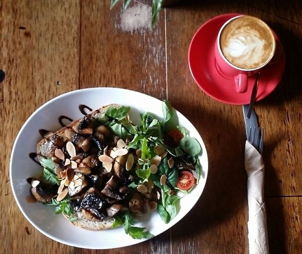 """Photo of CLOSED: Lost Boys  by <a href=""""/members/profile/Mike%20Munsie"""">Mike Munsie</a> <br/>latte & mushrooms on sourdough <br/> December 13, 2016  - <a href='/contact/abuse/image/52247/252301'>Report</a>"""